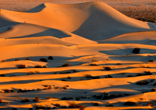 Dunes at Sunset
